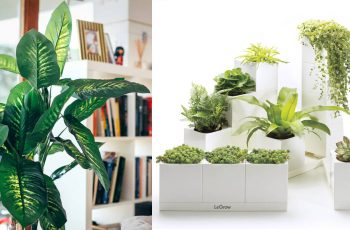 plantas y flores articiales para decorar tu hogar
