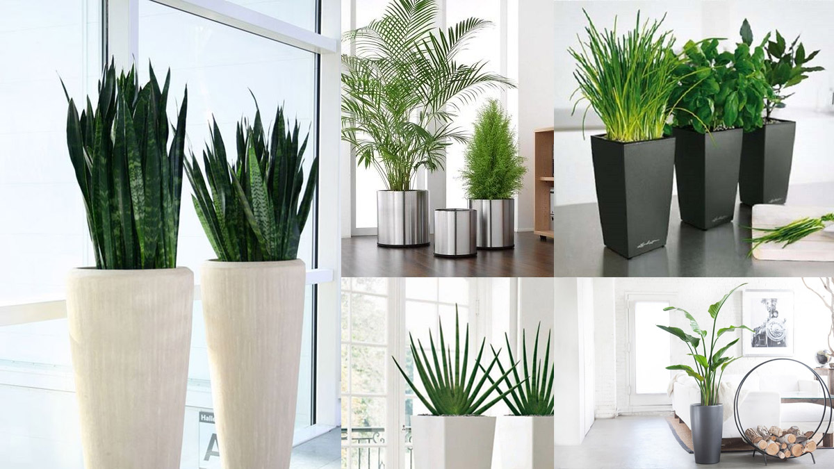 plantas y flores decorativas artificiales 01