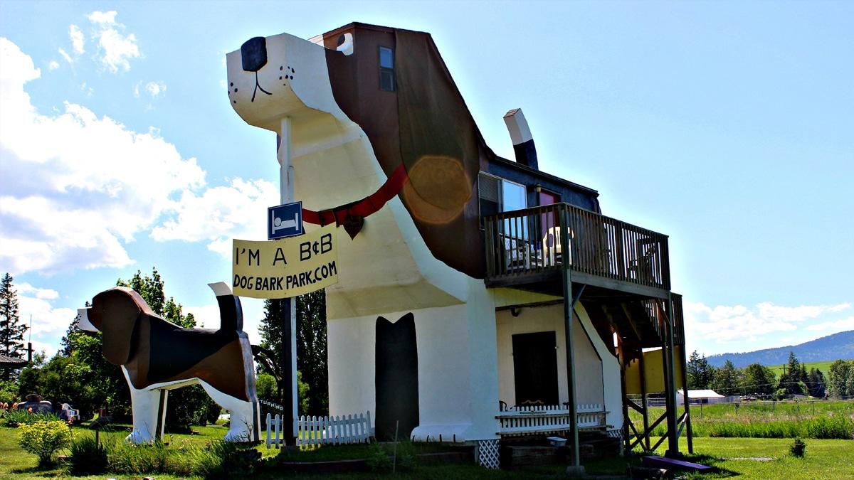 Casa Perro Cottonwood