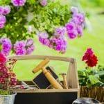 cuidados de un jardin en primavera