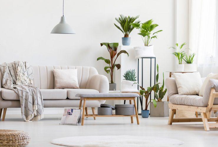 Cómo decorar con plantas artificiales realistas