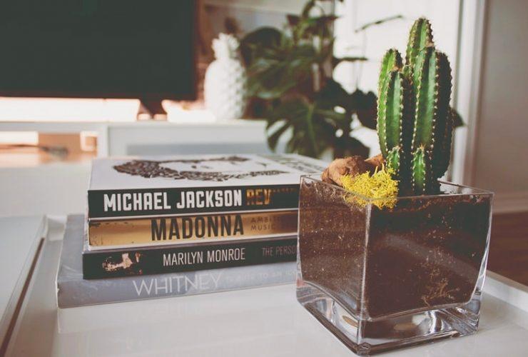 Libros decorativos: Cómo integrarlos en la decoración
